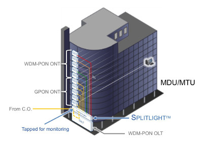 WDM-PON and GPON Through SplitLight